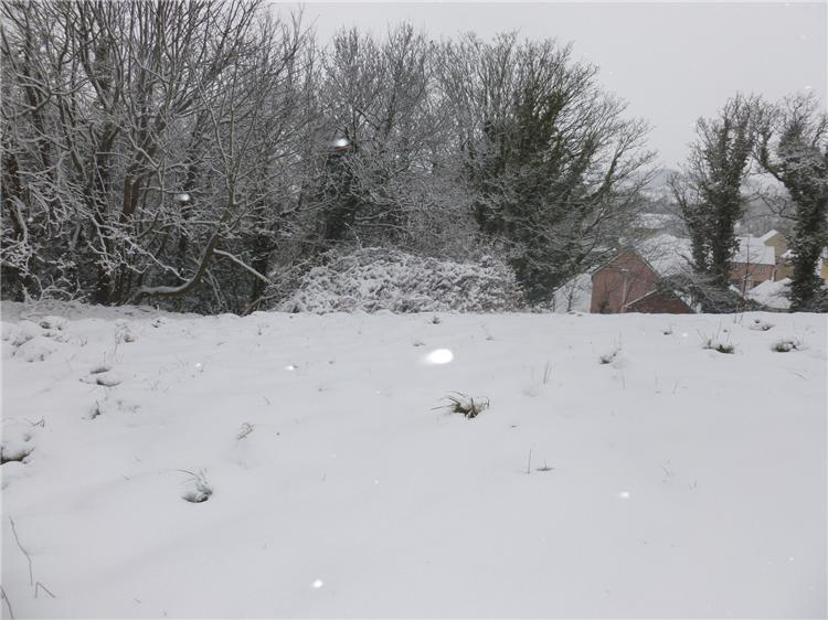 A few more snow pics March 2018 009